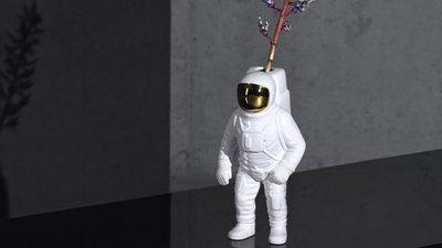 9cf6e5372a6b6 O astronauta que gosta de flores e outras compras