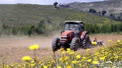 Tudo sobre: Ministério da Agricultura – Observador