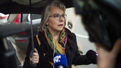 """7748d50078 Dirigente dos """"coletes amarelos"""" em França anuncia criação de partido  político"""