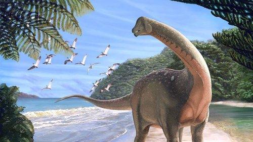 O Dinossauro Egípcio Que Pode Resolver Um Mistério Com 250