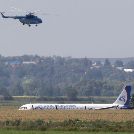 Avião aterra em campo de milho em Moscovo depois de colidir com pássaros. Há 23 feridos