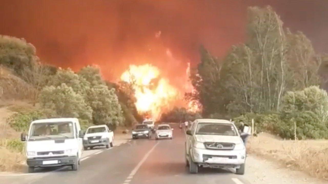 Forest fires in Algeria [Screengrab/ Social media]