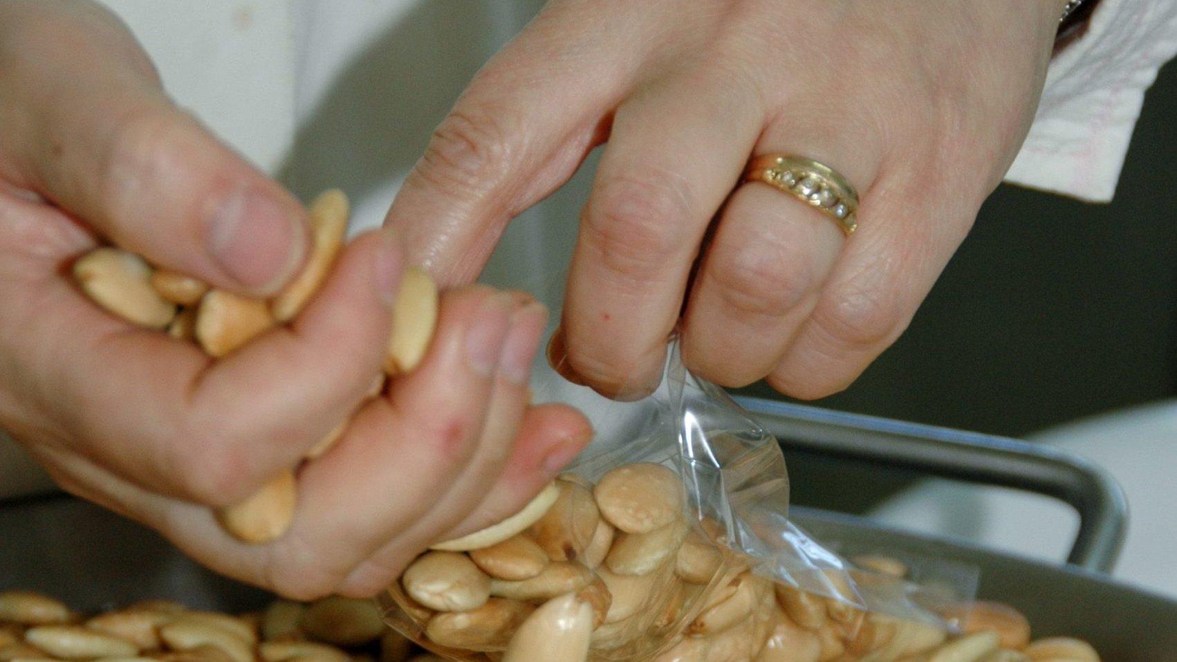 """A doceira Maria Eugénia Torres produz doces tradicionais feitos à base de amêndoa sob a marca """"Sabores da Geninha"""", Figueira de Castelo Rodrigo, 3 de abril de 2011. (ACOMPANHA TEXTO)  FRANCISCO BARBEIRA/LUSA"""