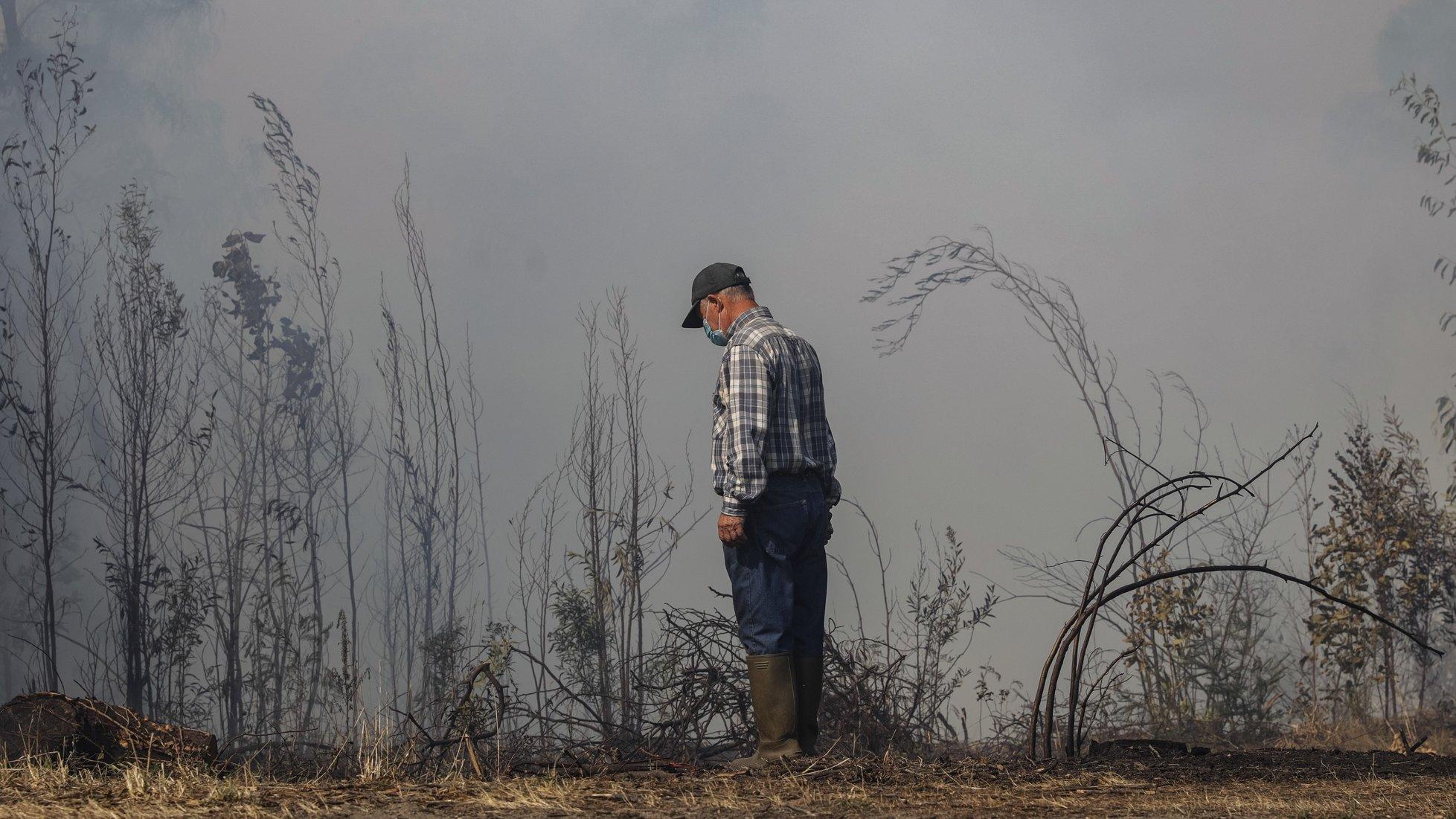 Um popular reage durante o incêndio florestal que lavra desde segunda-feira nos concelhos de Oliveira de Frades e Sever do Vouga, em Cedrim, 08 de setembro de 2020. A Estrada Nacional (EN) 328 encontra-se hoje cortada entre as freguesias de Pessegueiro do Vouga e Talhadas, na saída para a Autoestrada 25 (A25), no concelho de Sever do Vouga, devido ao incêndio de Oliveira de Frades. PAULO NOVAIS/LUSA