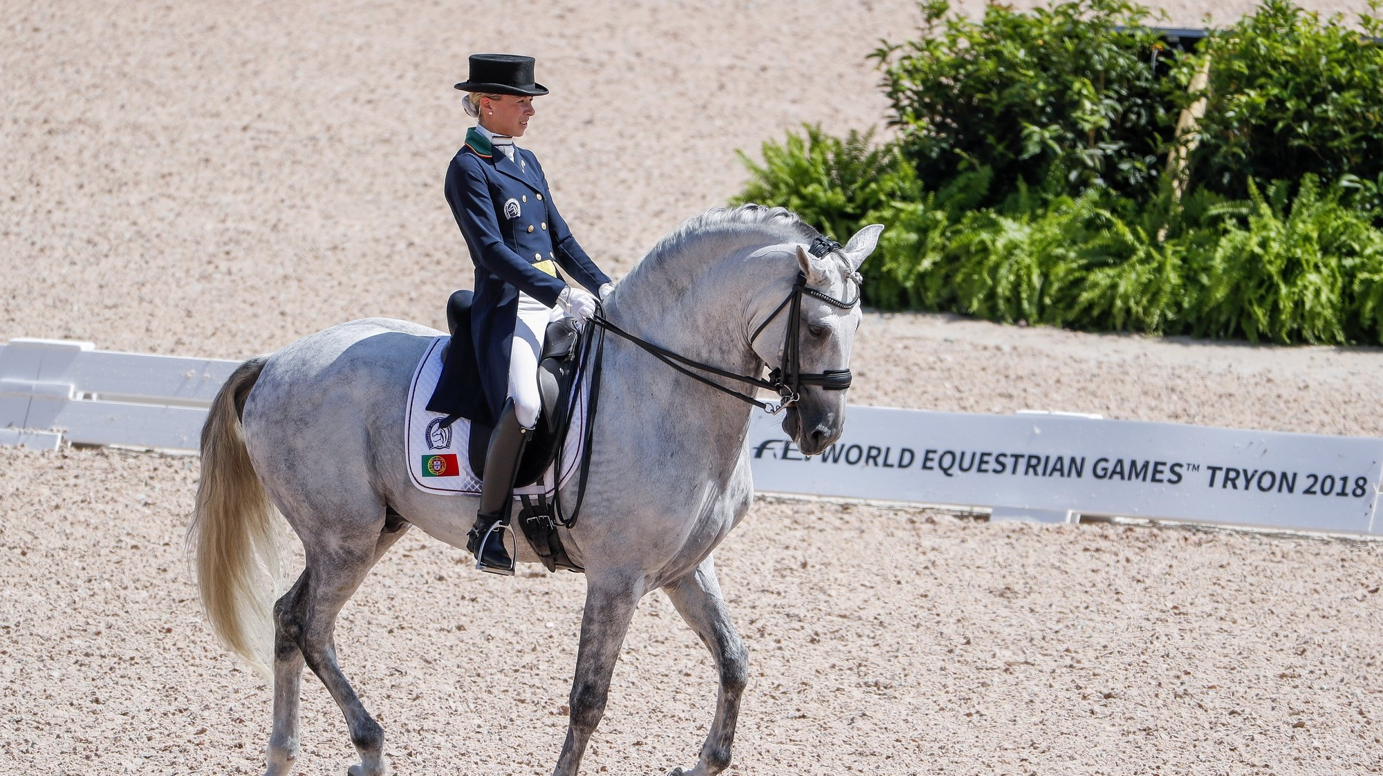 epa07018202 Maria Caetano of Portugal competes aboard Coroado during the team championship Grand Prix de Dressage at the FEI World Equestrian Games 2018 at the Tryon International Equestrian Center in Mill Spring, North Carolina, USA, 13 September 2018. The World Equestrian Games continue through 23 September 2018.  EPA/ERIK S. LESSER