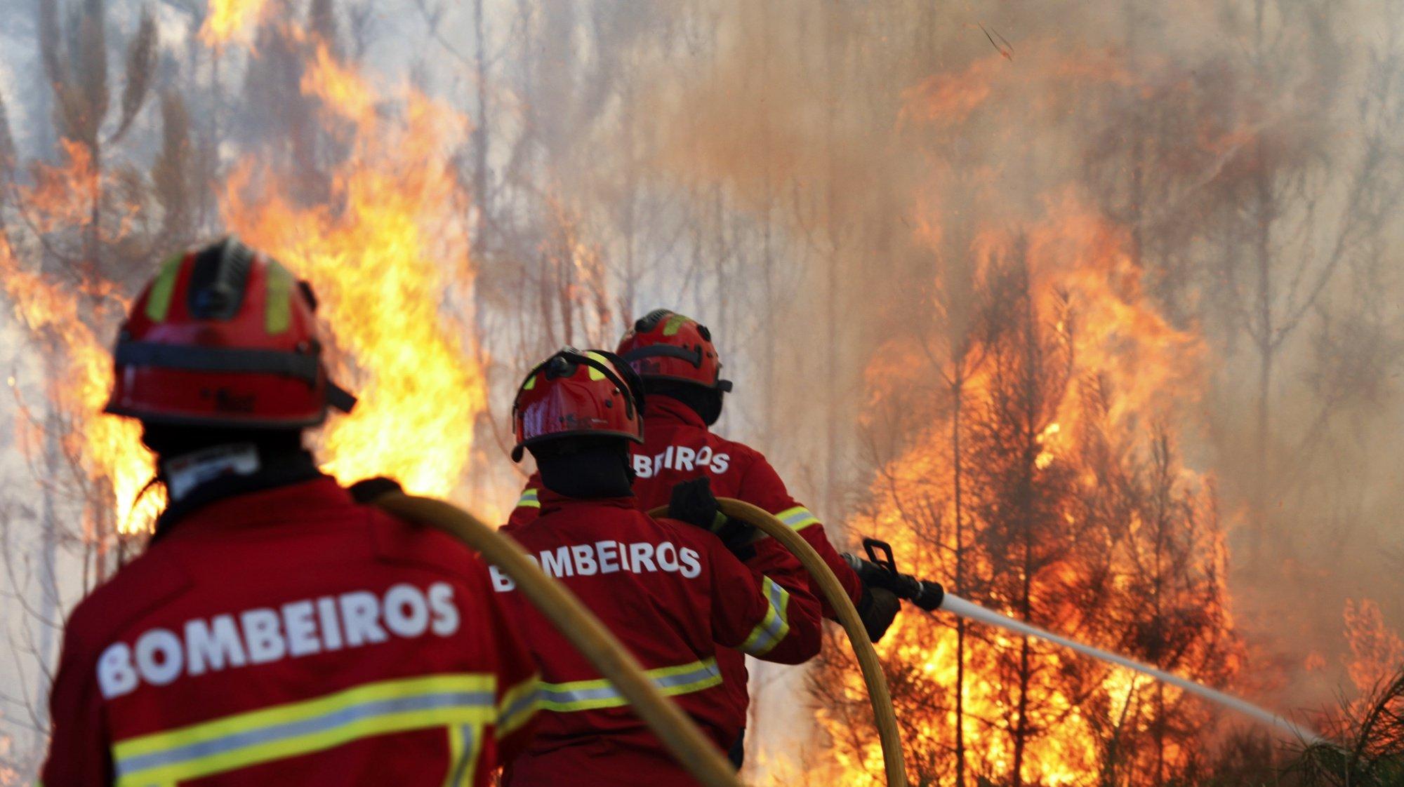 Bombeiros durante o combate a um incêndio entre Casal dos Bernardos e Rio de Couros, no concelho de Ourém, 4 agosto 2015. PAULO CUNHA/LUSA