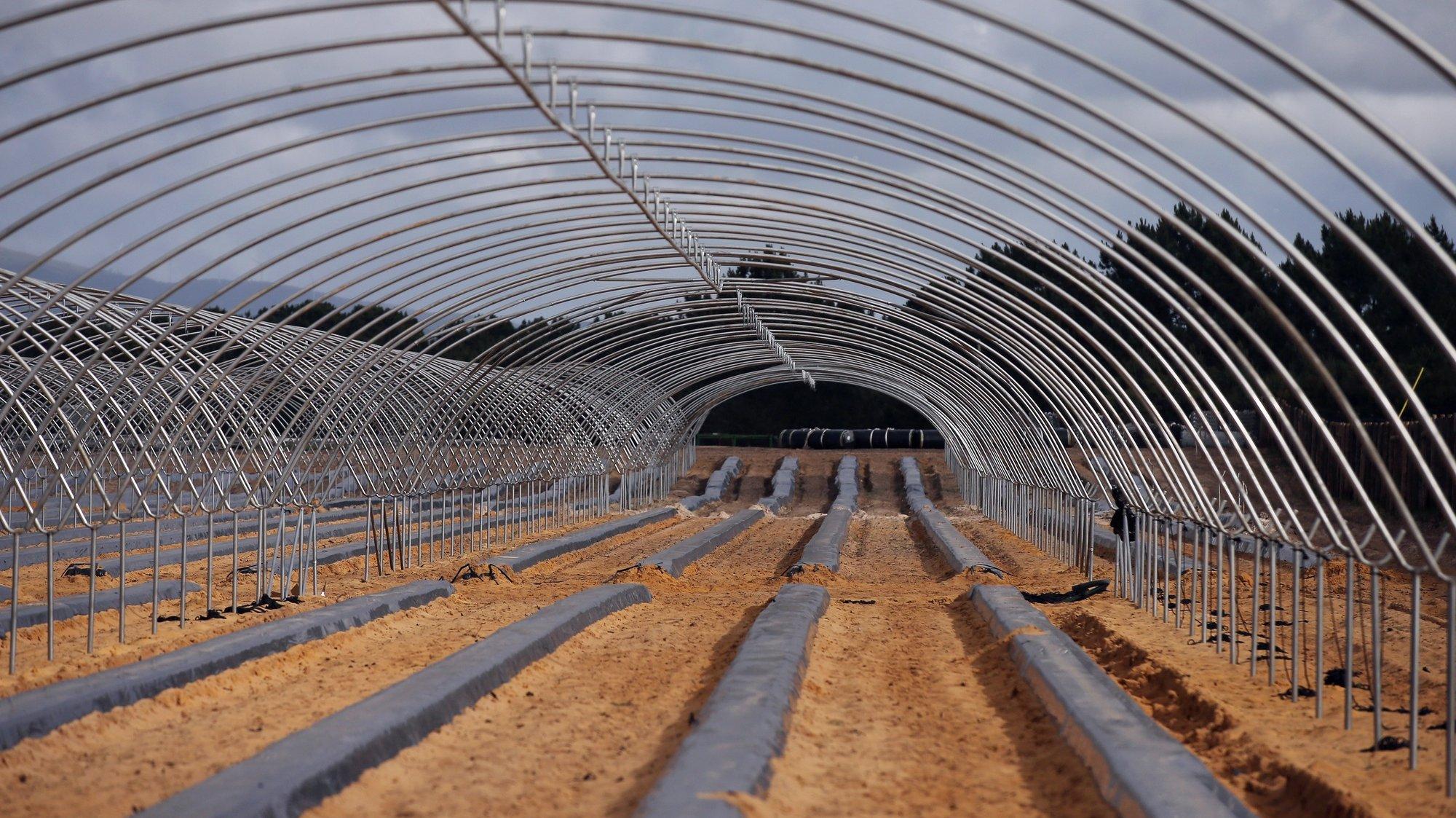 Novas estufas estão a ser construidas junto ao Brejão (Odemira), zona onde os habitantes estão rodeados por este tipo de agricultura intensiva e se queixam entre outras coisas do aumento da quantidade de moscas, para além do cheiro dos produtos químicos utilizados na agricultura. Odemira, 10 de maio de 2021. (ACOMPANHA TEXTO  DE 19/05/2021). NUNO VEIGA/LUSA