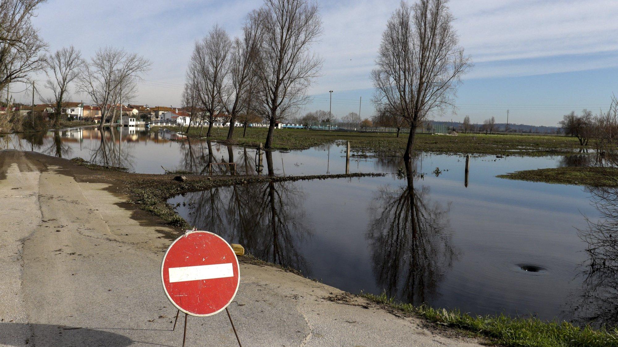 """A população da Ereira, Montemor-o-Velho, teme que as próximas chuvas e uma nova subida do rio Mondego venham a inundar a aldeia, devido a uma vala atulhada de detritos e vegetação que não permite escoar a água, Montemor-o-Velho, Coimbra, 6 de janeiro de 2020. Em declarações à Lusa, o presidente de junta da Ereira, Vasco Martins (ausente na fotografia), resumiu a """"preocupação"""" da população, argumentando que """"existe um problema grave"""" com a vala de enxugo, por esta estar cheira de detritos e vegetação que praticamente impossibilita a normal circulação da água. (ACOMPANHA TEXTO). JOSÉ LUIS SOUSA/LUSA"""