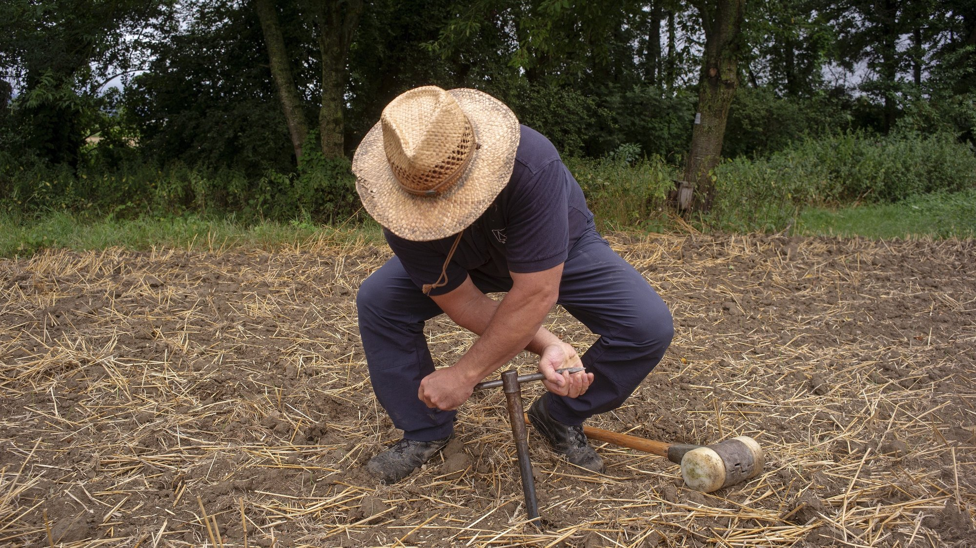 epa07747686 Austrian pedologist Guenter Aust, screws in a drill to take a ground sample on a field near Petztenkirchen, 100 kilometers west of the capital Vienna, Austria, 29 July 2019. Aust, who is in charge of mapping and field recording at the Austrian Federal Research and Training Centre for Forests, Natural Hazards and Landscape, takes soil samples from land where no data has been collected to analyze and digitize the soil structure and layouts as part of his efforts to curate an Austrian soil map. The map would be used to help farming and policy decisions about land usage and related rights. Aust told epa that a fertile soil layer can take decades to regenerate after heavy rains or otherwise damaged land. As well as working on soil mapping, Aust campaigns to raise awareness about land usage and consideration of local soil, lamenting that humus-rich soil and highly valuable agricultural land that need to be protected and maintained are much cheaper than most construction grounds. Aust is part of a global effort to better protect and use the earth's resources. The Global Footprint Network, a United States-based international non-profit research group, calculates the Earth's Overshoot Day, an illustrative date on which humanity's consumption of natural resources exceeds the planet's ability to replenish them. The date for 2019, 29 July, came two months earlier than 20 years ago, further illustrating the rapid rate of soil erosion. Maria Helena Semedo, Deputy Director-General for Climate and Natural Resources at the Food and Agriculture Organization (FAO) of the United Nations (UN) said on 15 May 2019: 'Today the equivalent of one soccer pitch of soil is eroded every five seconds, and the planet is on a path that could lead to the degradation of more than 90 percent of all the Earth's soils by 2050.'  EPA/CHRISTIAN BRUNA