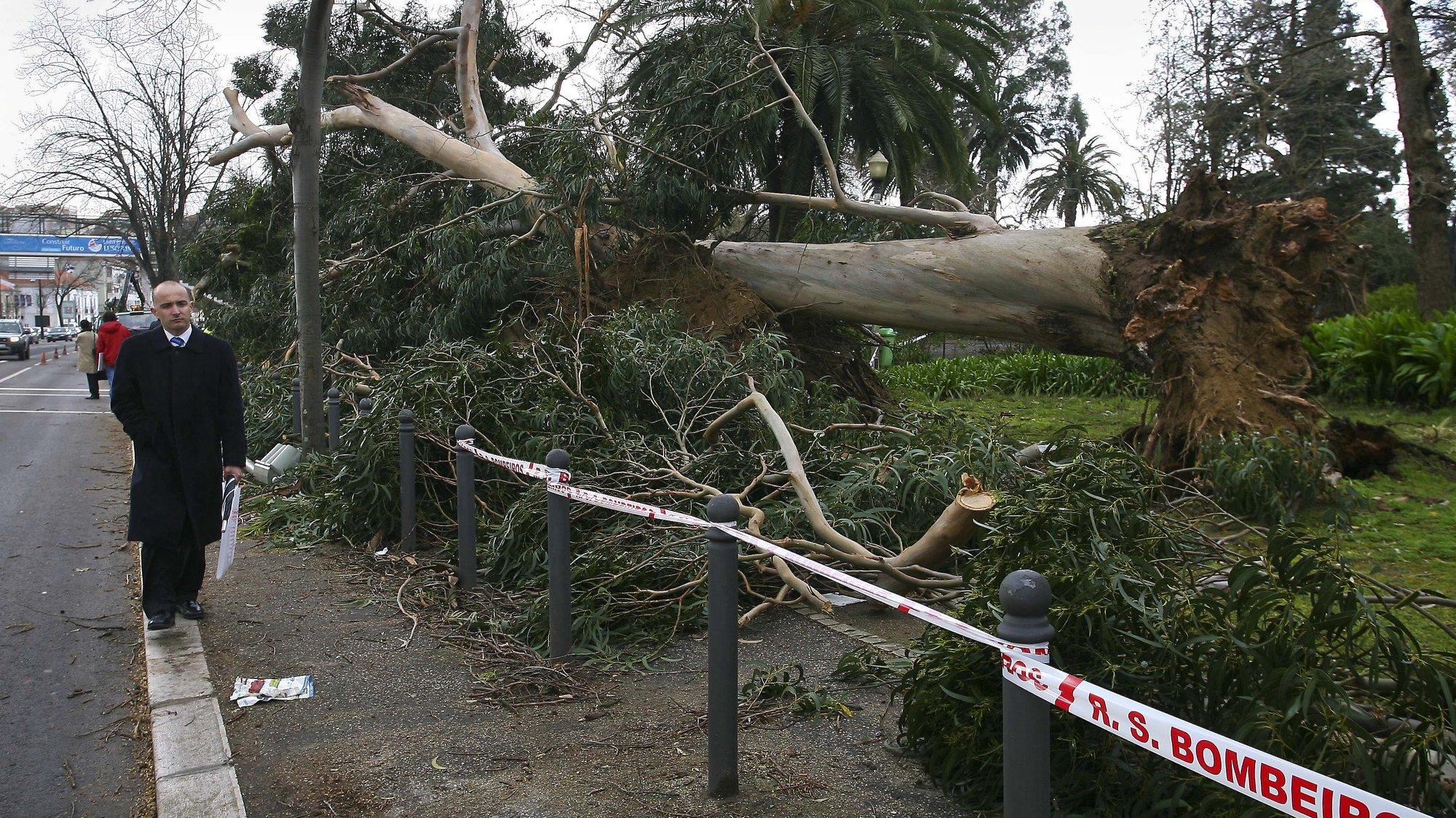Algumas árvores caíram esta noite no Campo Grande devido aos ventos fortes que assolam a cidade de Lisboa, 05 de Março de 2009. MIGUEL A. LOPES/LUSA
