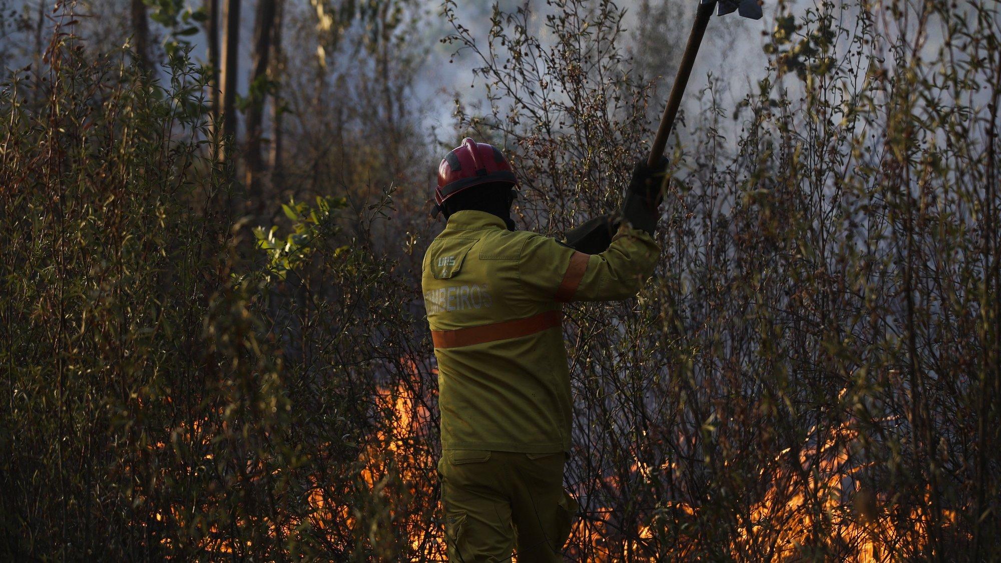 Um bombeiros combate um incêndio em Glória do Ribatejo, no concelho de Salvaterra de Magos, 22 agosto 2021. O incêndio que lavradesde cerca das 15:00 de hoje em Salvaterra de Magos causou um ferido ligeiro, o condicionamento da uma estrada e o corte da linha férrea de Vendas Novas. PAULO CUNHA/LUSA