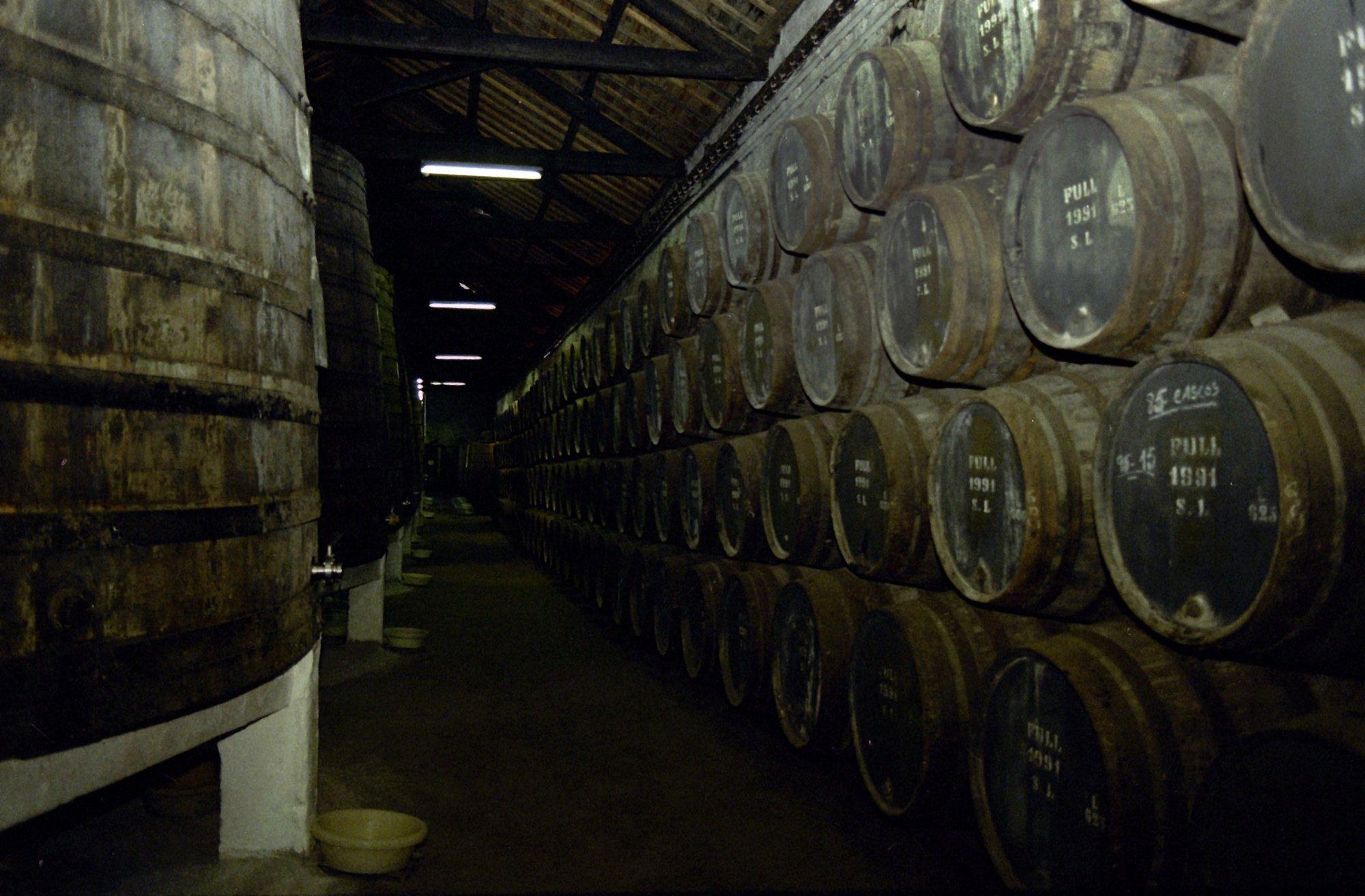 Pipas de vinho armazenadas nas Caves de Vinho Porto em Vila Nova de Gaia, a 8 de fevereiro de 1994.  Francisco Neves / Lusa