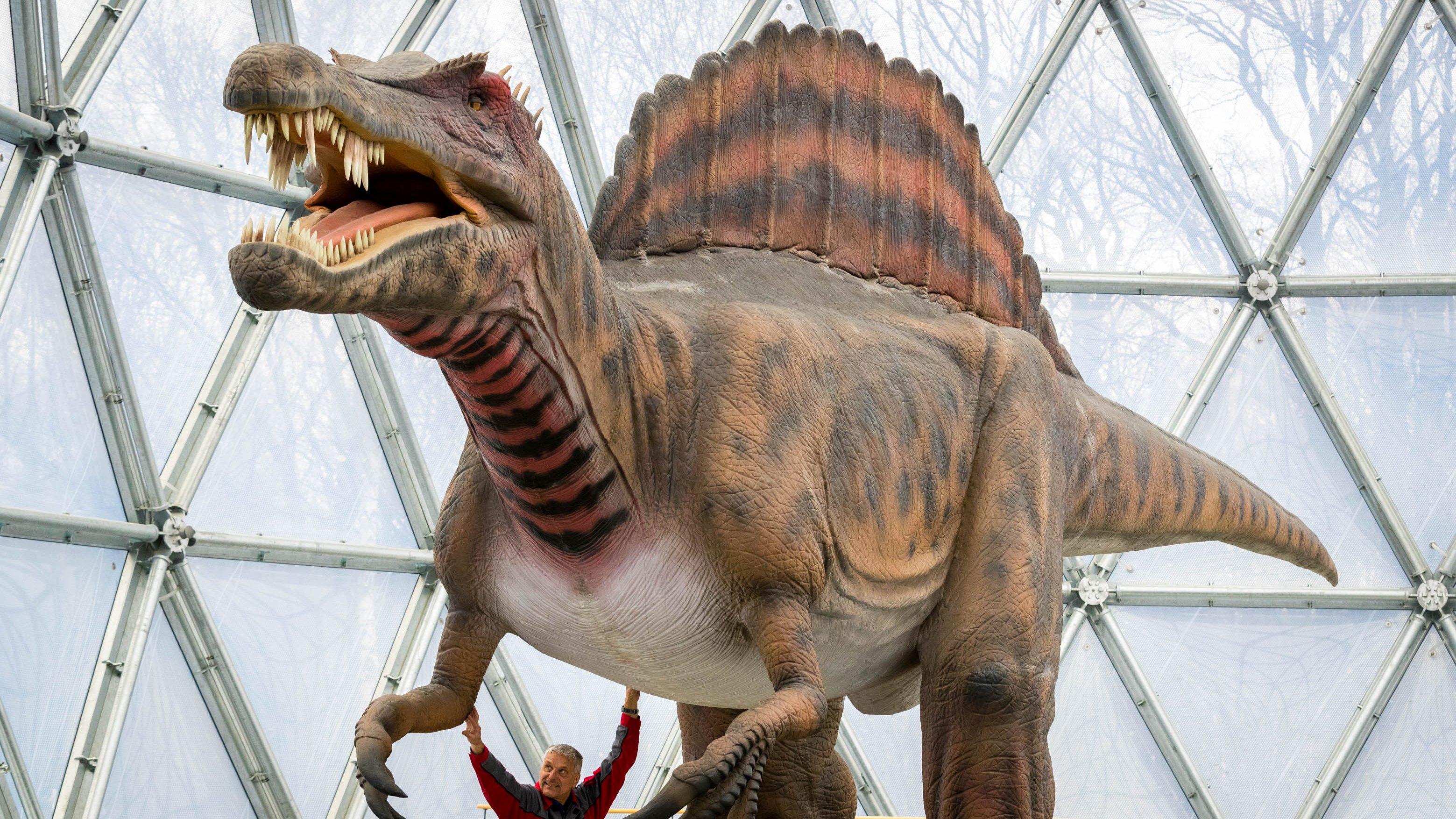 Season Opening of Dinosaur Park in Kleinwelka