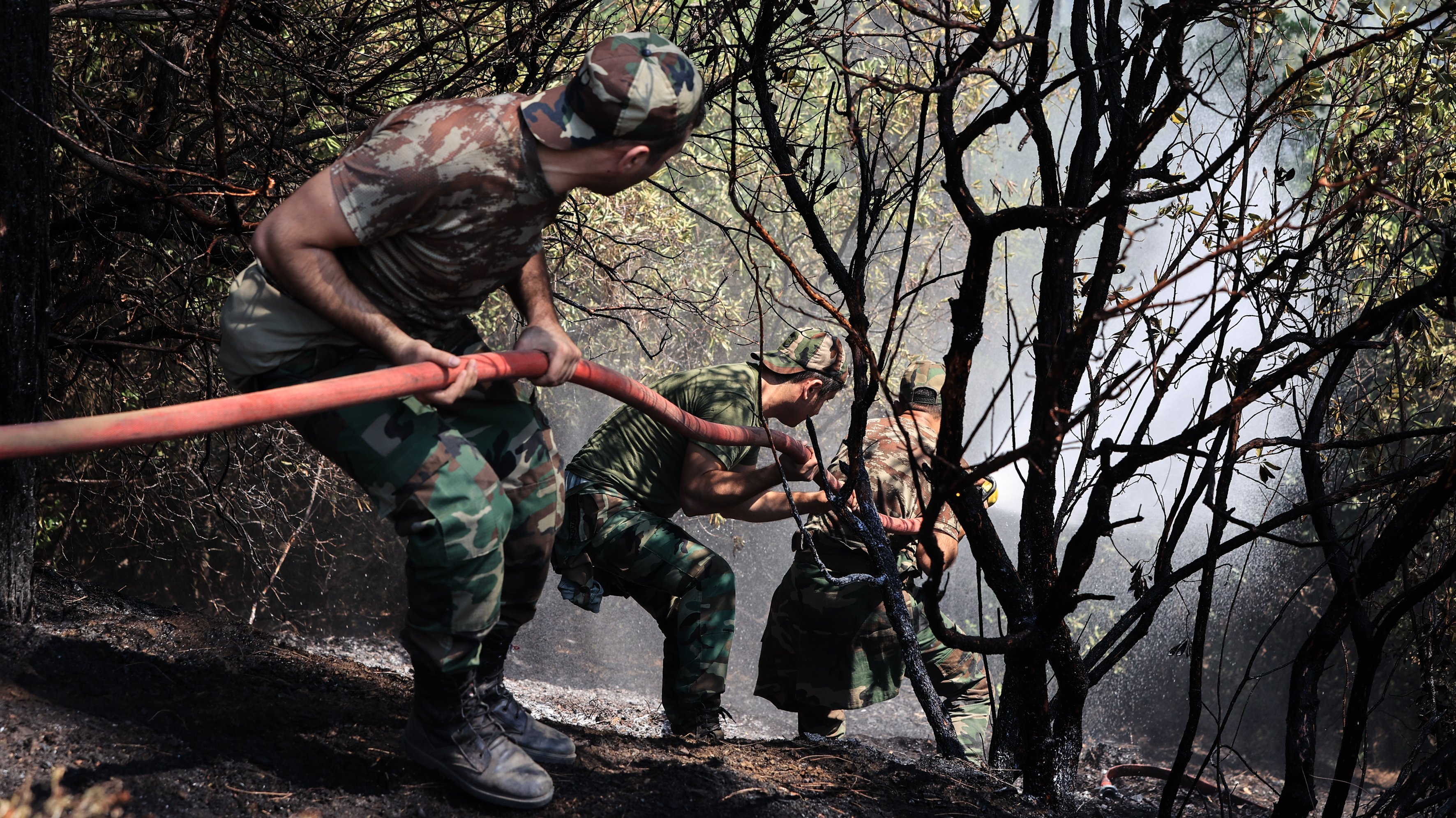 Forest fire in Turkey's Marmaris