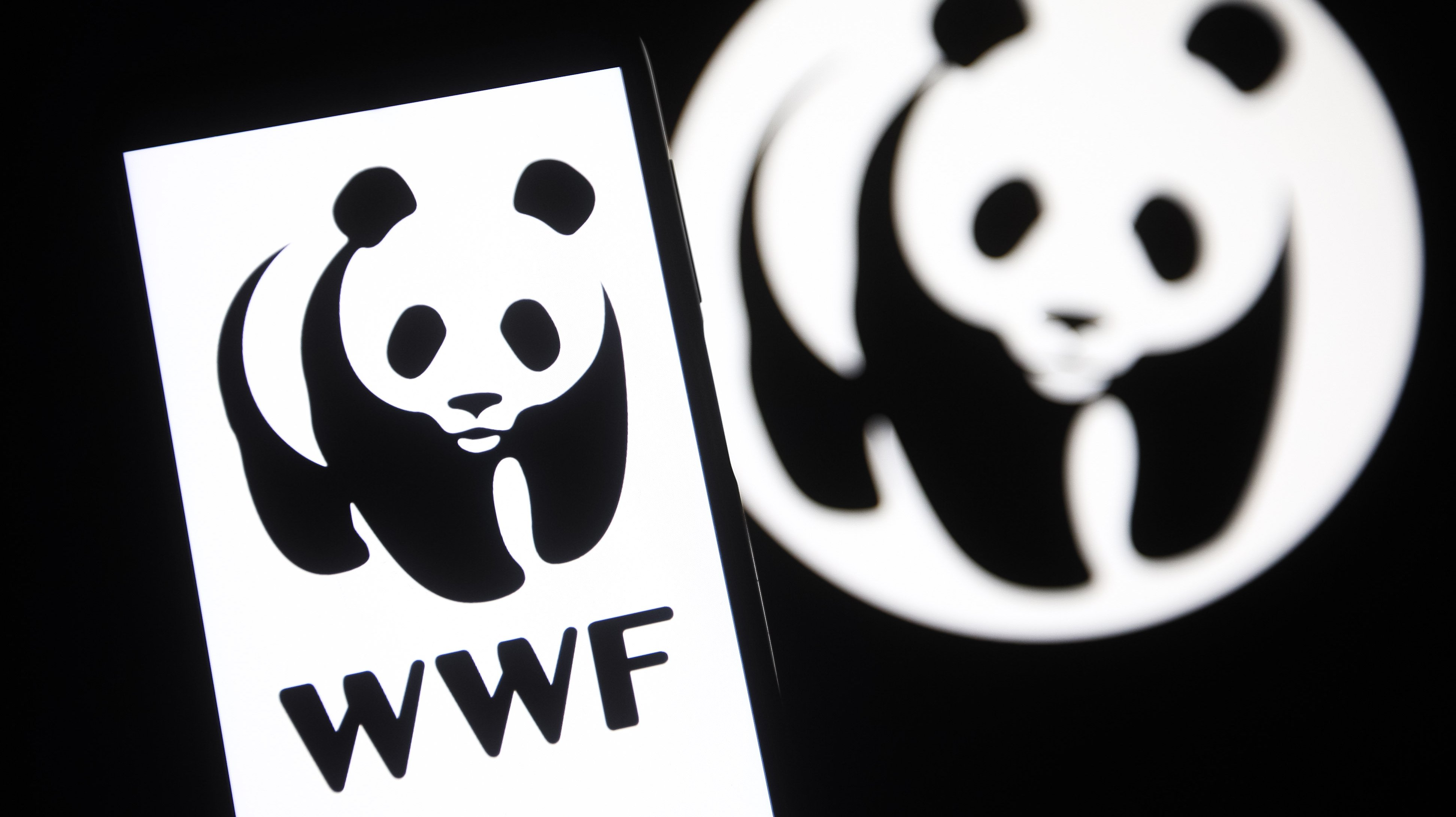 In this photo illustration a World Wide Fund for Nature (WWF