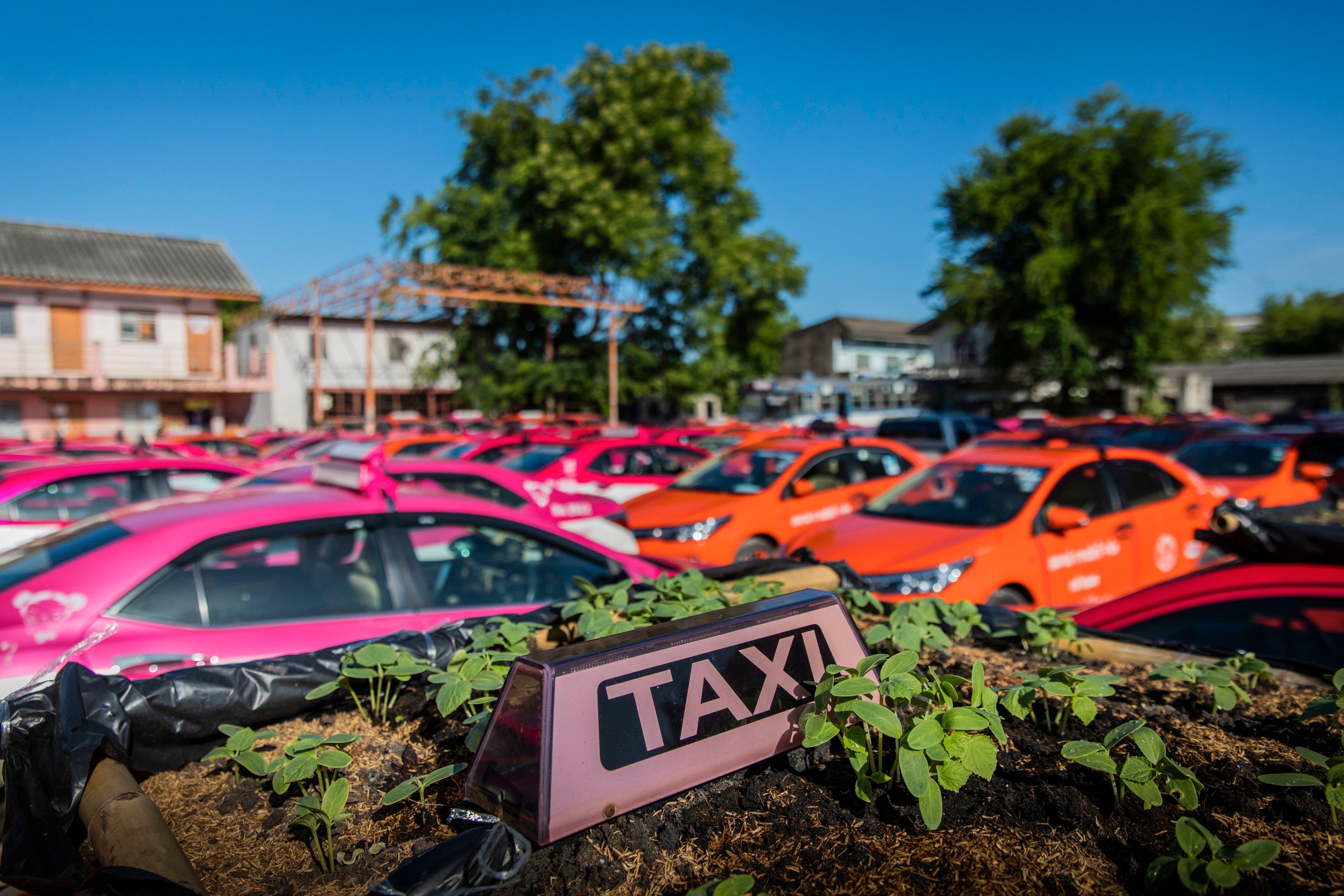 Bangkok's Taxis Turn Into Gardens As Low Tourism Bites