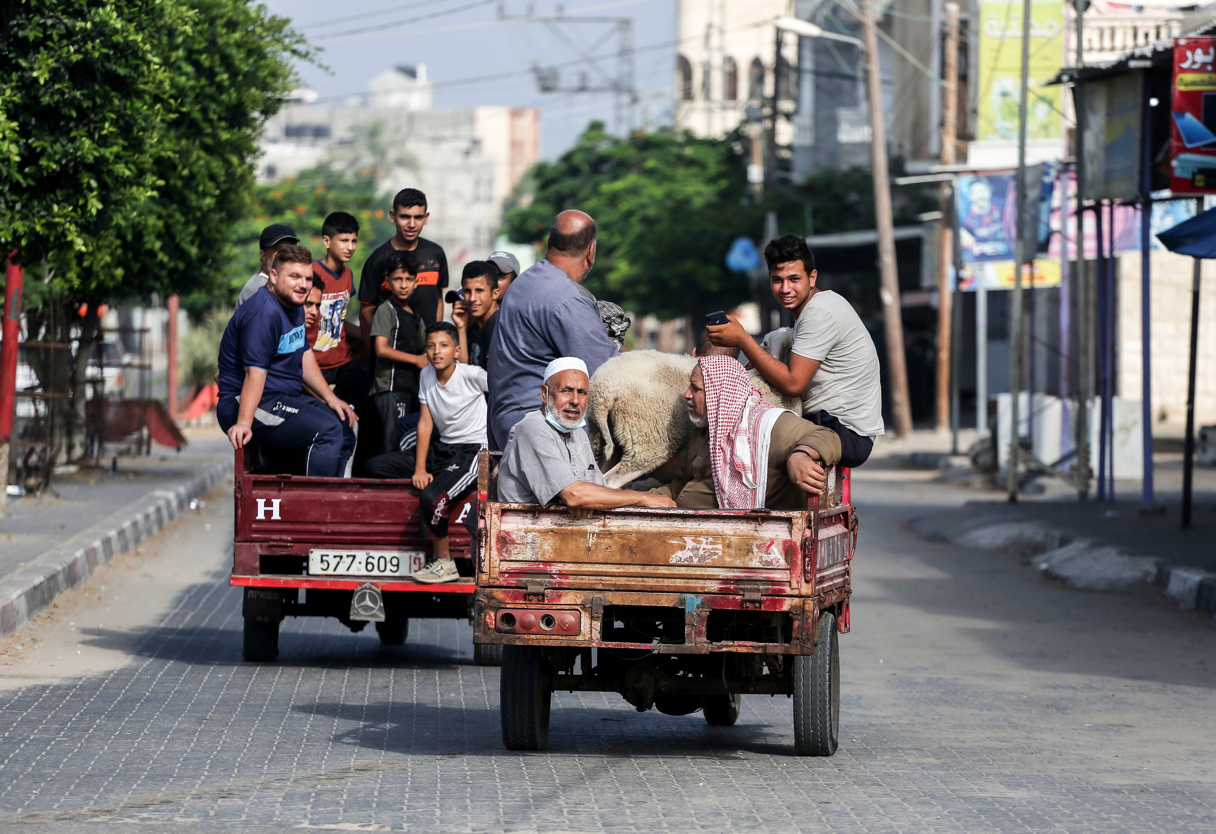 """Palestinians leave on a """"tuk-tuk"""" with their sheep they"""