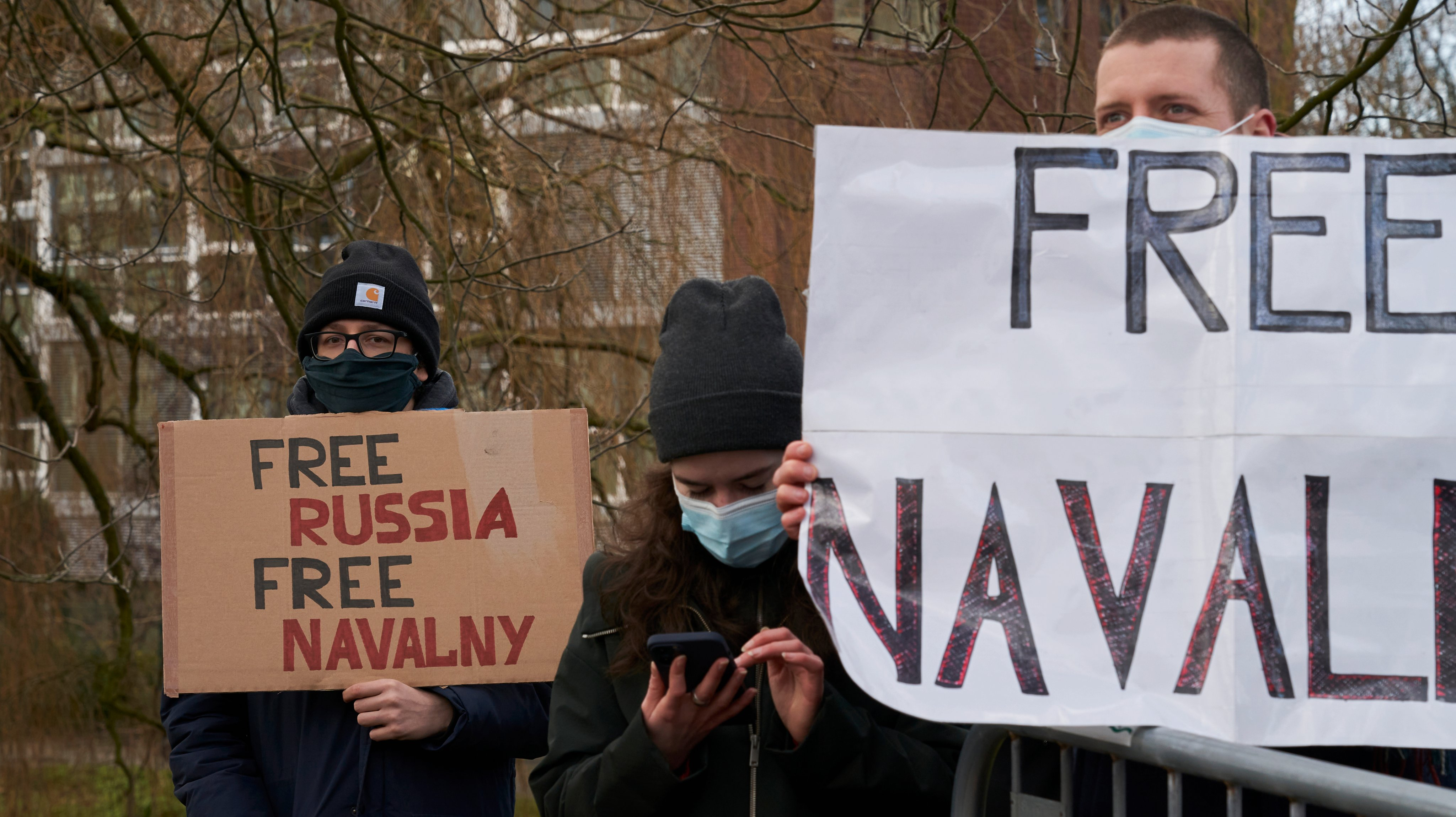 Demonstration in support of Russian dissident Alexei Navalny