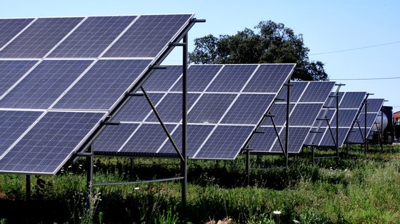 """Empresa espanhola vai aumentar o seu investimento até 2025 """"maioritariamente com centrais fotovoltaicas"""""""
