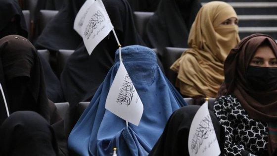 O reitor da Universidade de Cabul considera deixar as alunas assistir às aulas atrás de uma cortina na sala de aulas