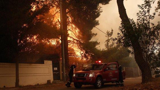Incêndio florestal na área de Stamata mobiliza centenas de bombeiros