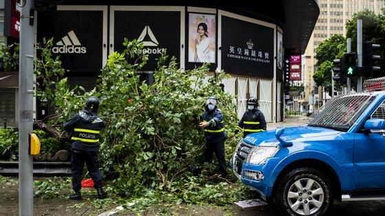 Um ano antes, o tufão Hato (posteriormente denominado de Yamaneko pelas autoridades locais), considerado o pior em mais de 50 anos a atingir o território, causou dez mortos e 240 feridos