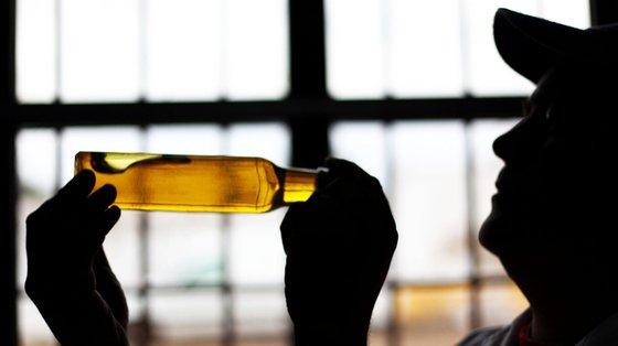 """A produção de azeite no Alentejo pode chegar """"às 20 toneladas por hectare"""""""