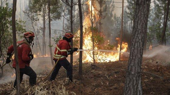 O detido é ainda suspeito de outros incêndios, ocorridos em anos anteriores, quer nestes dois concelhos, quer nos de Oleiros e Vila de Rei