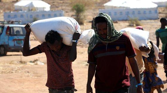 20.000 refugiados vivem nos campos Shimelba e Hitsats, que foram completamente destruídos nos primeiros meses do conflito