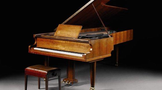 A pianista pertenceu às direções artísticas dos Cursos Internacionais do Festival de Música do Estorile da Orquestra Filarmónica de Lisboa