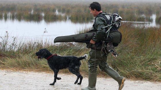 Mesmo sem caça há uma probabilidade significativa de se manter o declínio da espécie. Com a pressão da caça, esse declínio aumenta