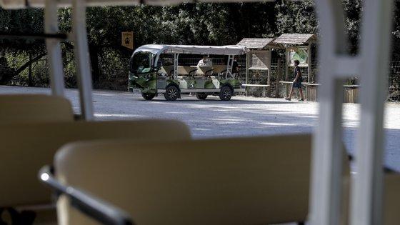 O tradicional comboio a combustíveis para as visitas na Tapada de Mafra foi substituído por veículos elétricos, mais discretos e com menor pegada ecológica, em Mafra, 18 de agosto de 2021. (ACOMPANHA TEXTO DA LUSA DO DIA 22 DE AGOSTO DE 2021). TIAGO PETINGA/LUSA