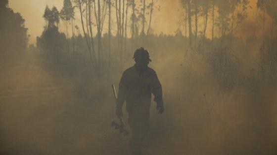 Segundo o MAI, este ano registaram-se menos 52% de incêndios rurais e menos 72% de área ardida relativamente à média dos últimos 10 anos