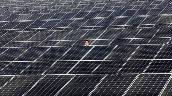 """A empresa liderada por Manso Neto """"continua a sua rápida expansão em mercados de grande potencial de desenvolvimento de projetos de energia eólica e solar"""""""