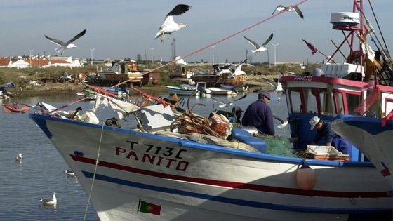 A agência Lusa tentou obter esclarecimentos da DGRM, através do Ministério do Mar, mas não obteve resposta, até ao momento