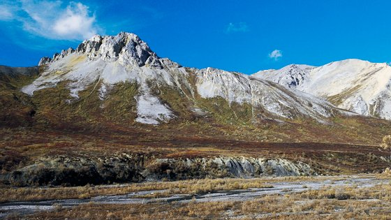 Fósseis foram descobertos nas Montanhas Mackenzie, no Canadá