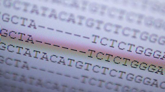 Algumas mutações nos genes conferem vantagens ao vírus, outras não