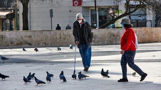 Entre fevereiro de 2021 e janeiro de 2021, a Câmara Municipal de Lisboa capturou 7.420 pombos para avaliação do seu estado sanitário