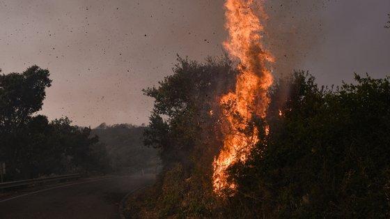 Os incêndios obrigaram ao governo italiano a pedir ajuda à União Europeia