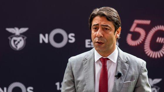 Rui Costa assumiu a liderança encarnada em julho, na sequência da demissão de Luís Filipe Vieira