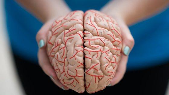 A doença de Parkinson é uma patologia neurodegenerativa, crónica e progressiva, sendo a segunda doença neurodegenerativa mais comum