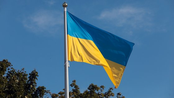 Serhiy Shefir, principal conselheiro de Volodymyr Zelensky, atacado em Kiev, esta quarta-feira