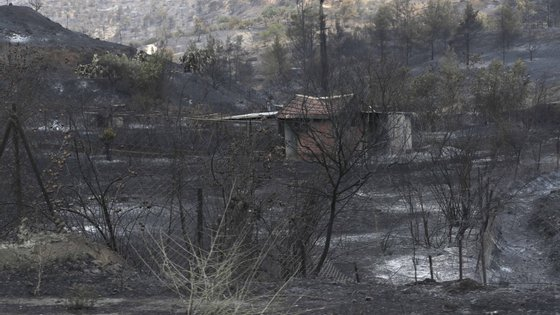 Fire in Cyprus brought under control