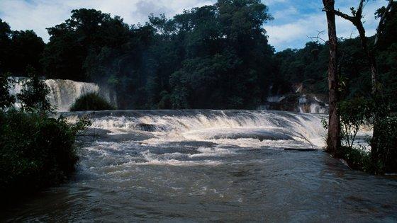 As Cascatas da Água Azul são consideradas cachoeiras e foram declaradas Reserva Natural da Biosfera em 1980