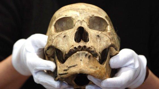 Cientistas são a favor do estudo das ossadas, mas opõem-se à exportação