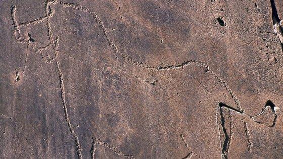 Descobriram-se as gravuras do Côa há 20 anos