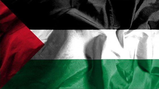 O parlamento aprovou, a 12 de dezembro de 2014, uma resolução a recomendar o reconhecimento do Estado da Palestina, com os votos do PS, PSD e CDS-PP