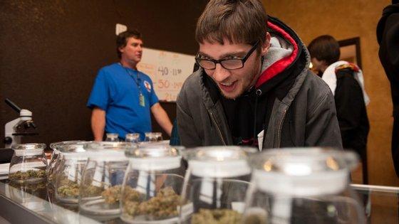 A cannabis para fins terapêuticos foi legalizada em 23 estados, mas ainda é ilegal ao nível do governo federal dos EUA