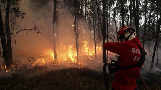 Quatro meios aéreos, dois helicópteros e dois aviões, estão a ajudar no combate às chamas