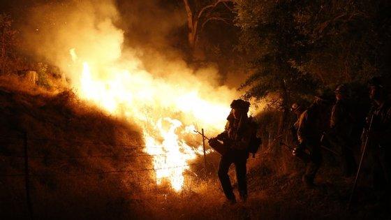 Nos condados californianos de Lake e Napa foi este domingo declarado estado de emergência